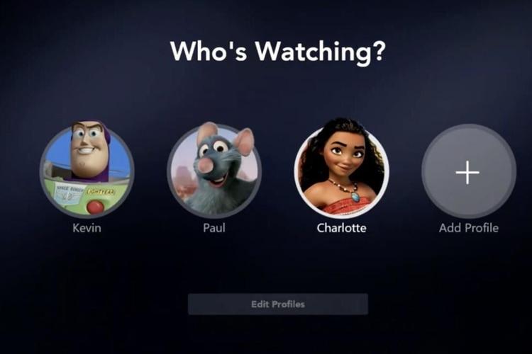 Interface de Disney+ que nos permite modificar nuestros perfiles. Foto: Teitter