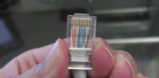 Cable de red armado con ficha macho. Foto: Youtube